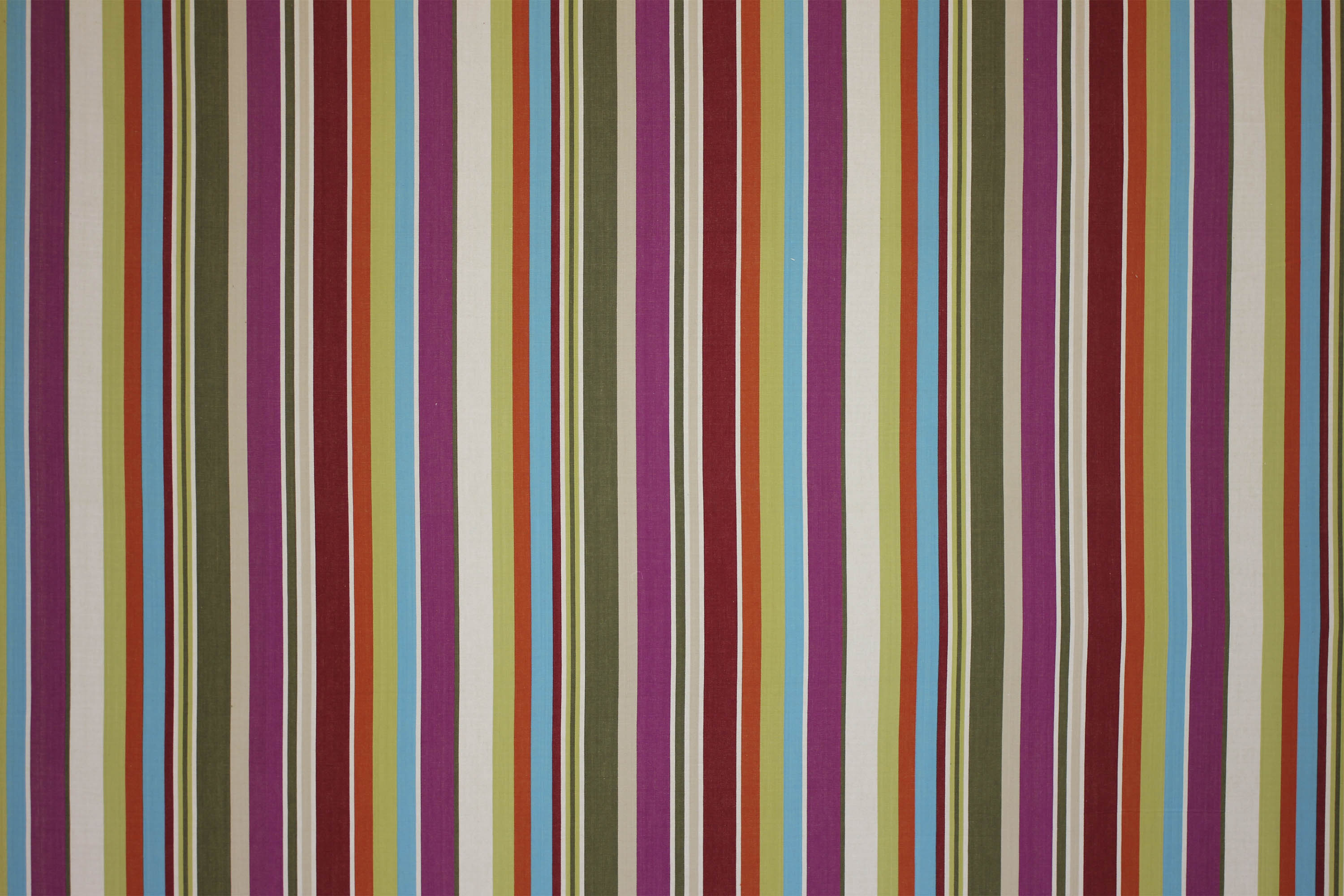 Cream Striped Fabrics | Stripe Cotton Fabrics | Striped Curtain Fabrics | Upholstery Fabrics  Dressage Stripes
