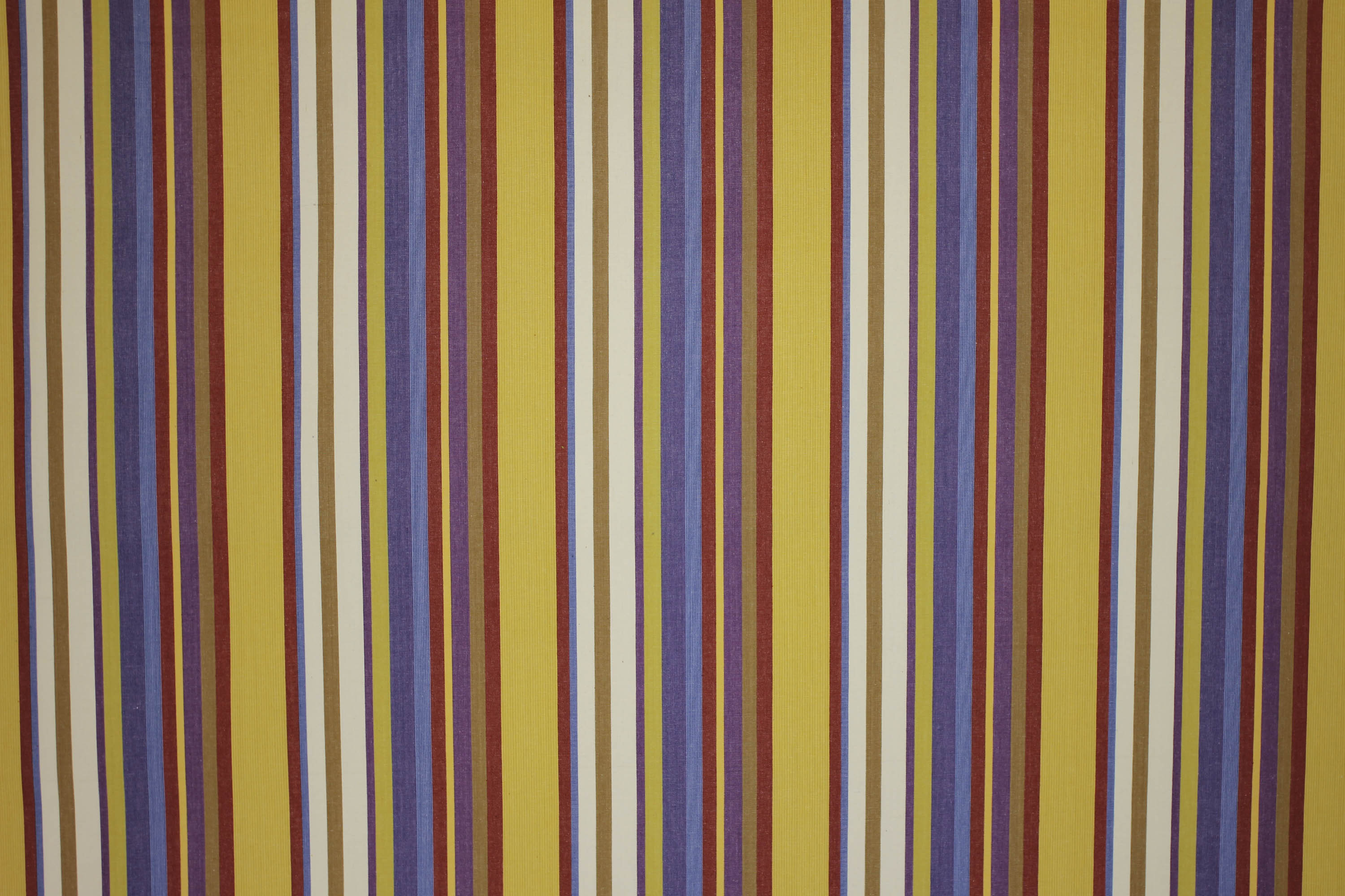 Horseshoe Apricot Striped Fabric